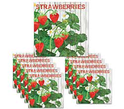 200 Servietten Harvest Strawberries 33 x 33 cm ppd 1332394