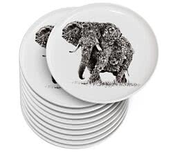 10er SET Maxwell & Williams DX0526 MARINI FERLAZZO Teller 20 cm AFRICAN ELEPHANT, Premium-Keramik, in Geschenkbox